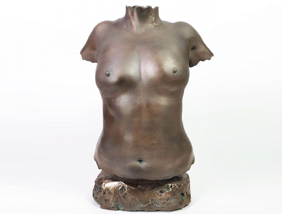 Borstbeeld, bodycasting, kunst borsten, amputatie, borstkanker, pink Ribbon, Torso afdruk.jpg
