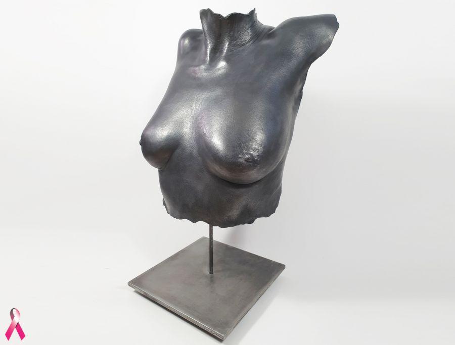 Bodycasting, lifecasting, 3D borstbeeld, torso afdruk borsten,borstafdruk voor borst ampuatie, borsten vereeuwigen, 3D beeld borsten,  gipsafdruk borst , sculpturen 9.jpg