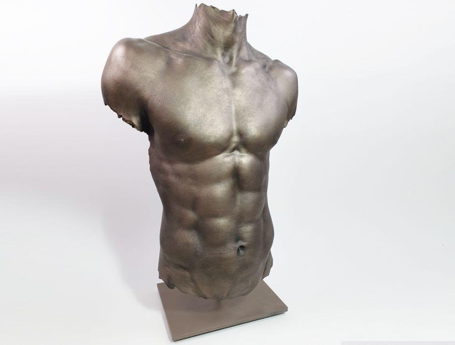 Body casting, life casting, shownieuws marius, torso, bodybuilder, muscles, sculpture torso 2 .jpg