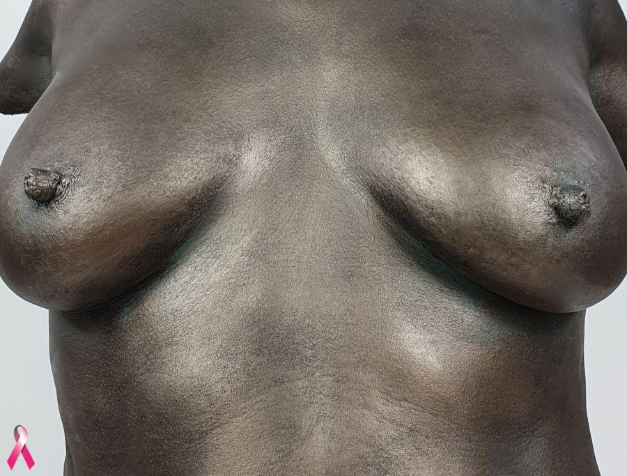 Bodycasting, lifecasting, 3D borstbeeld, torso afdruk borsten,borstafdruk voor borstampuatie, borsten vereeuwigen, 3D beeld borsten,  gipsafdruk borst , sculpture 12.jpg